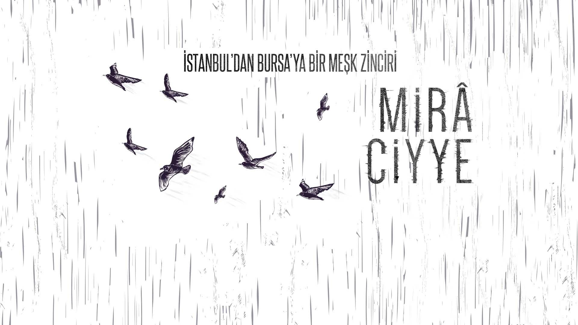 Miraciyye